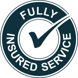fully-insured-service-icon